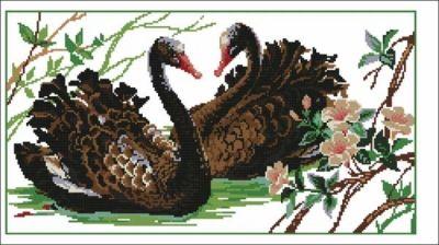 Схема вышивки черные лебеди фото 333
